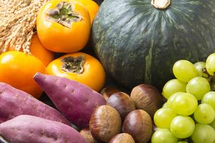 秋の食材の写真素材 [FYI04889623]