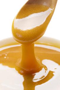マヌカ蜂蜜の写真素材 [FYI04889634]