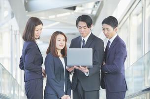 ノートPCの画面を見るビジネスチームの写真素材 [FYI04889672]