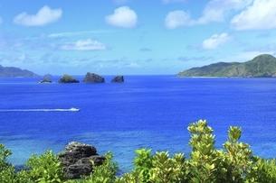 沖縄県 座間味島の女瀬の崎展望台より青い海を望むの写真素材 [FYI04889739]