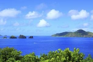 沖縄県 座間味島の女瀬の崎展望台より青い海を望むの写真素材 [FYI04889740]
