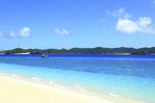沖縄県 阿嘉島のニシバマビーチの写真素材 [FYI04889762]