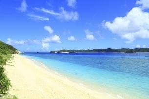 沖縄県 阿嘉島のニシバマビーチの写真素材 [FYI04889768]