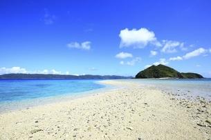 沖縄県 座間味島の古座間味ビーチの海と幻の道に安室島の写真素材 [FYI04889773]