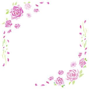 バラの水彩イラストのフレーム素材のイラスト素材 [FYI04889779]