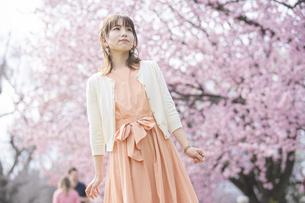 桜の花を楽しむ女性の写真素材 [FYI04889962]