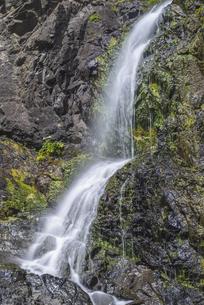 礼文滝の写真素材 [FYI04890291]