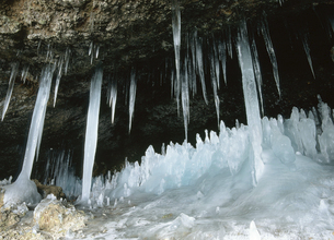 マッカウス洞窟の氷柱(北海道・知床)の写真素材 [FYI04890310]