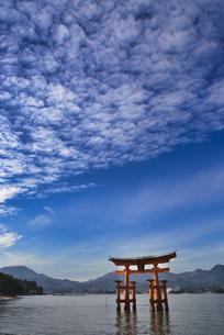 安芸の宮島・赤鳥居と秋の空の写真素材 [FYI04890514]