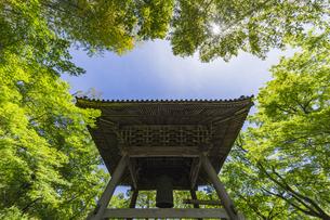 伊豆修善寺の観光名所 修禅寺境内の鐘楼堂の写真素材 [FYI04890545]