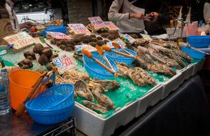 大阪 黒門市場の魚屋の写真素材 [FYI04890640]