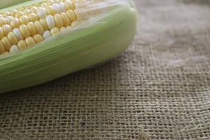 麻布の上に置いたトウモロコシの写真素材 [FYI04890675]