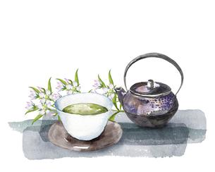 センブリとお茶セットの水彩画のイラスト素材 [FYI04890920]