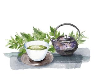 ヨモギとお茶セットの水彩画のイラスト素材 [FYI04890922]
