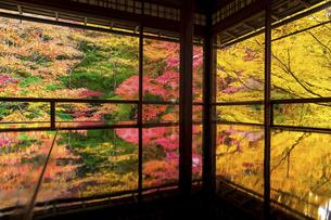 秋の瑠璃光院の写真素材 [FYI04890936]