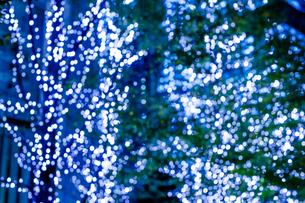 クリスマスイルミネーションの写真素材 [FYI04891689]