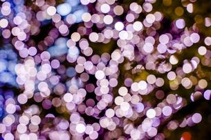 クリスマスイルミネーションの写真素材 [FYI04891693]
