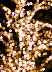 クリスマスイルミネーションの写真素材 [FYI04891698]