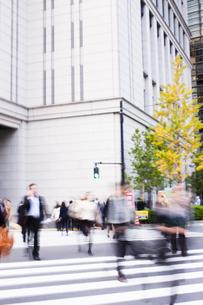 東京駅前の交差点を行き交うビジネスマンの写真素材 [FYI04891779]