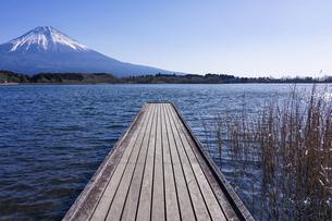 田貫湖から見渡す冬の富士山の写真素材 [FYI04891825]