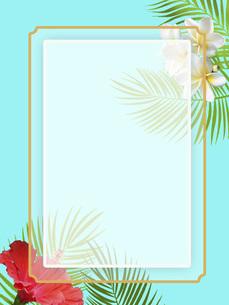 モンステラ 夏 ハイビスカス ハワイ 南国 フレーム 枠のイラスト素材 [FYI04892282]