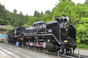 生田緑地 蒸気機関車D51の写真素材 [FYI04892381]