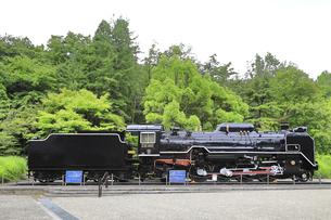 生田緑地 蒸気機関車D51の写真素材 [FYI04892382]