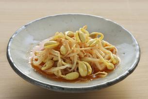 キムチ風味の大豆もやしの写真素材 [FYI04892807]