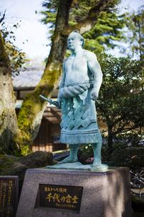 千代の富士像の写真素材 [FYI04893452]
