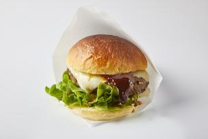 ハンバーガーの写真素材 [FYI04893496]