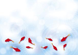 金魚の背景イラストのイラスト素材 [FYI04893605]