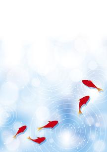 金魚の背景イラストのイラスト素材 [FYI04893606]