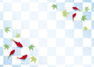 金魚と和柄と青紅葉の背景のイラスト素材 [FYI04893607]