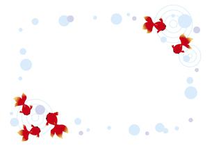 赤い金魚のフレームのイラスト素材 [FYI04893610]