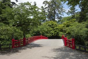 弘前城 杉の大橋の写真素材 [FYI04893999]
