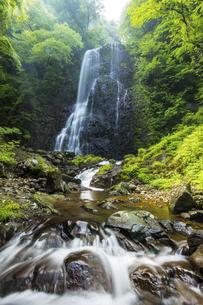 白猪の滝(愛媛県)の写真素材 [FYI04894065]
