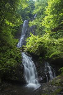 白猪の滝(愛媛県)の写真素材 [FYI04894091]