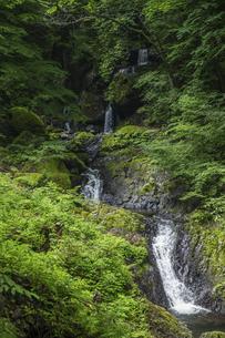 白猪の滝(愛媛県)の写真素材 [FYI04894092]