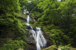 唐岬ノ滝(愛媛県)の写真素材 [FYI04894094]