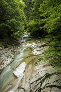 面河渓谷(愛媛県)の写真素材 [FYI04894102]