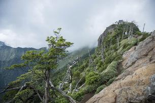 石鎚山 弥山山頂(愛媛県)の写真素材 [FYI04894170]