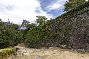 宇和島城の写真素材 [FYI04894188]