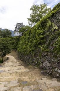 宇和島城の写真素材 [FYI04894189]