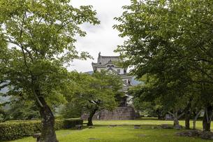 宇和島城の写真素材 [FYI04894191]