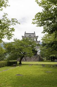 宇和島城の写真素材 [FYI04894192]