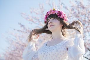 桜の花を楽しむ女性の写真素材 [FYI04894427]