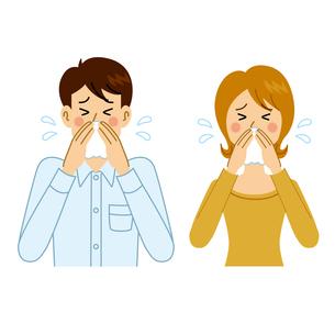 鼻をかむ男女のイラスト素材 [FYI04894606]