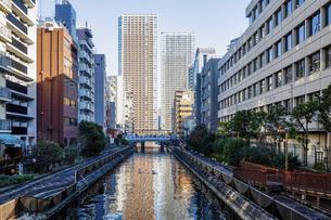 百代橋(東京都港区芝浦)から新芝南運河の向こうに芝浦アイランドの写真素材 [FYI04894748]