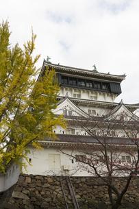 小倉城天守閣の写真素材 [FYI04895894]