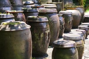 キムチの壺の写真素材 [FYI04895937]